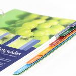 Sapec Agro | Manual